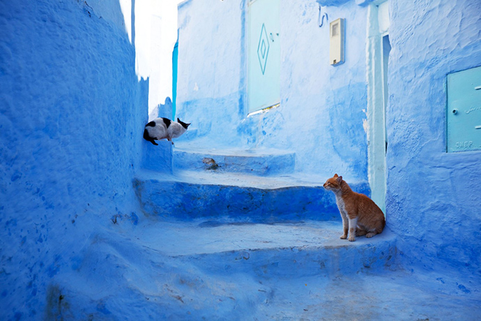 encuentros eleusinos en marruecos chaouen