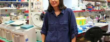 Maria Blasco, directora del CNIO: «Envejecer no es nada natural»